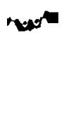 Heilpraxis Petritz Logo